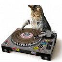 Cat Scratchin Dj Deck